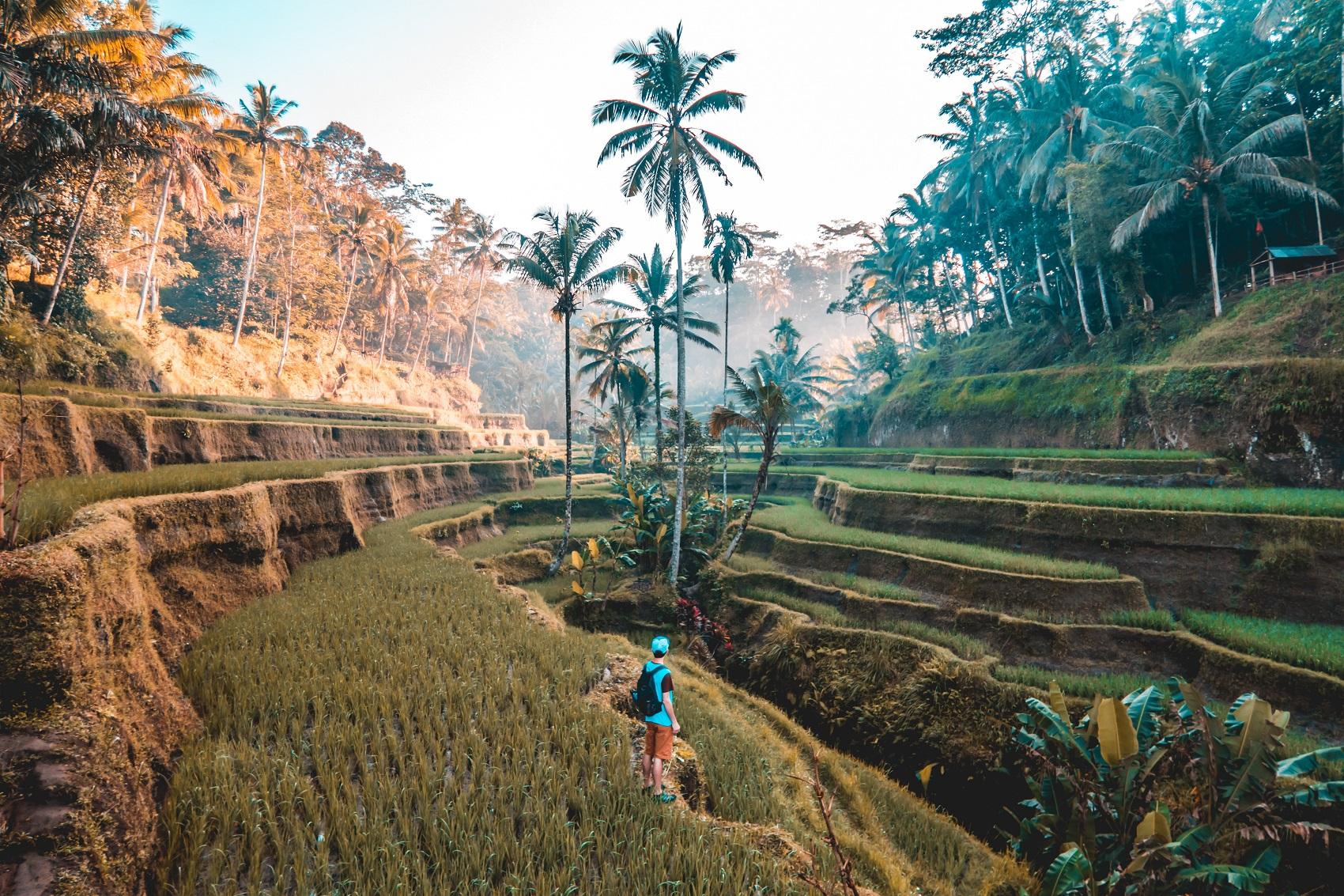 Bali w kwietniu