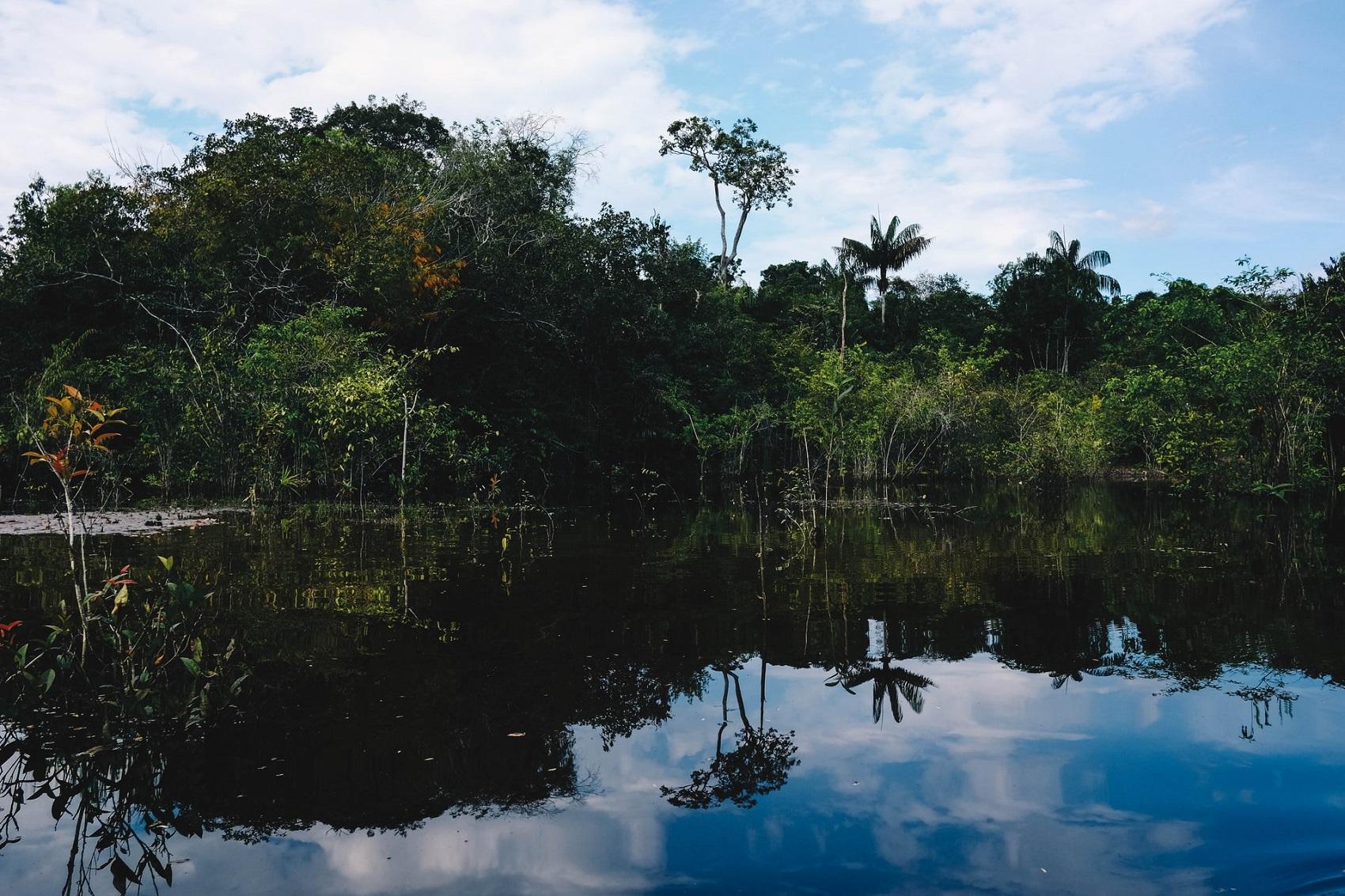 Brazylia i Amazonia w październiku