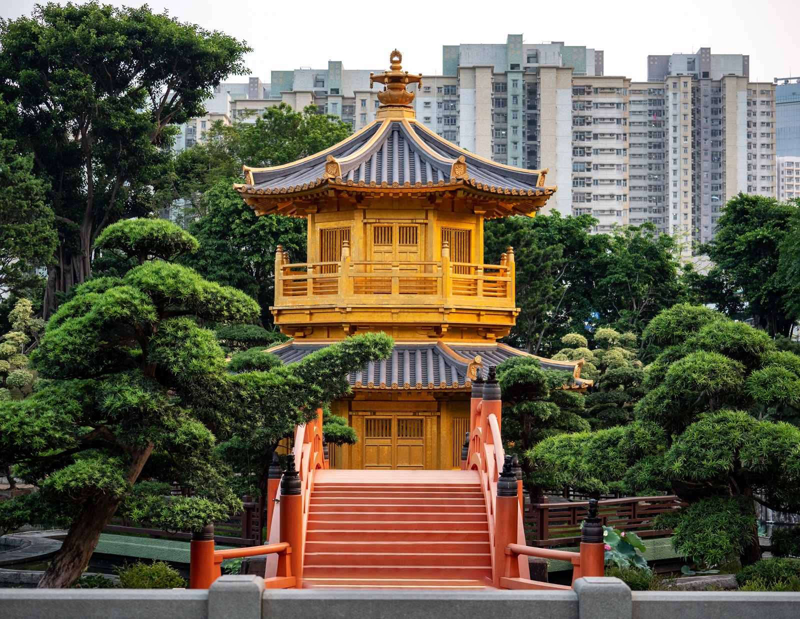 Ogród Nan Lian - Co zobaczyć w Hongkongu