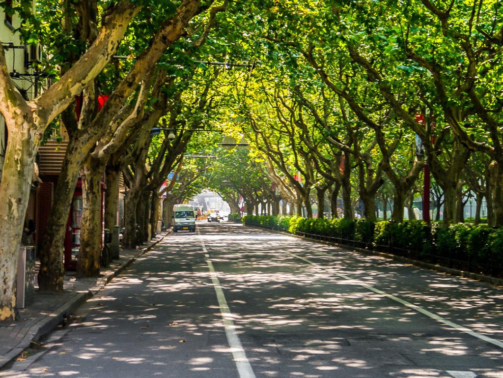 Sinan Road