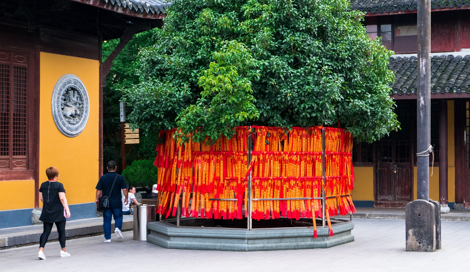 Wyjazd do Chin - porady